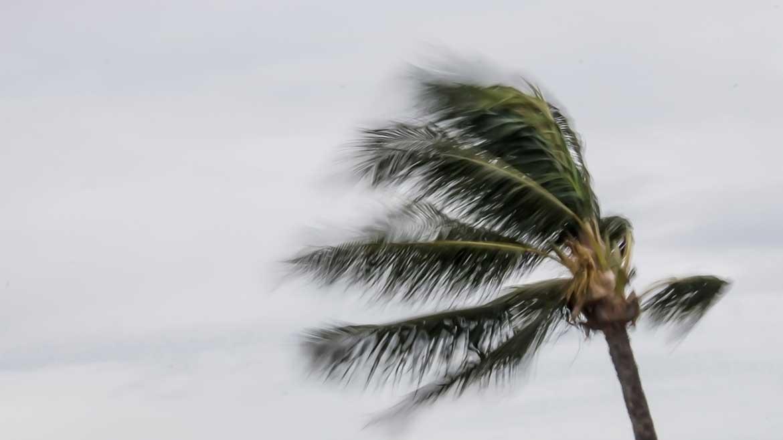 Severe Weather and Hurricane Preparedness