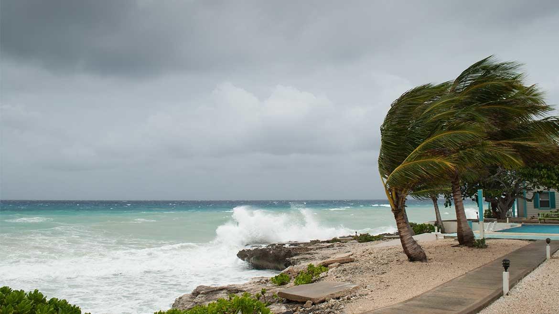 Prepare your Policy for Hurricane Season