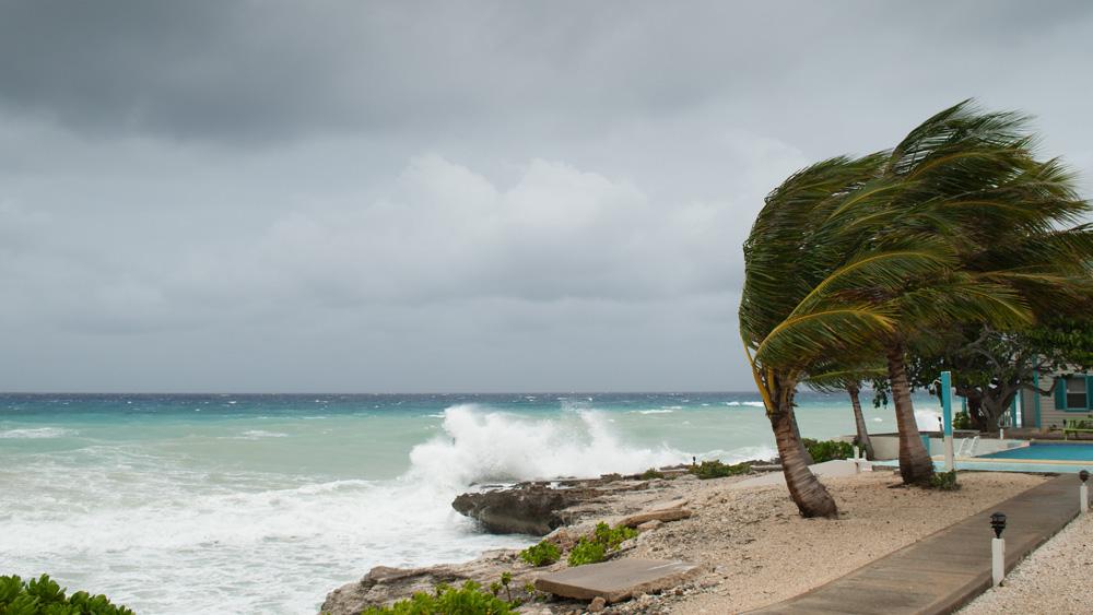 hurricane-insurance