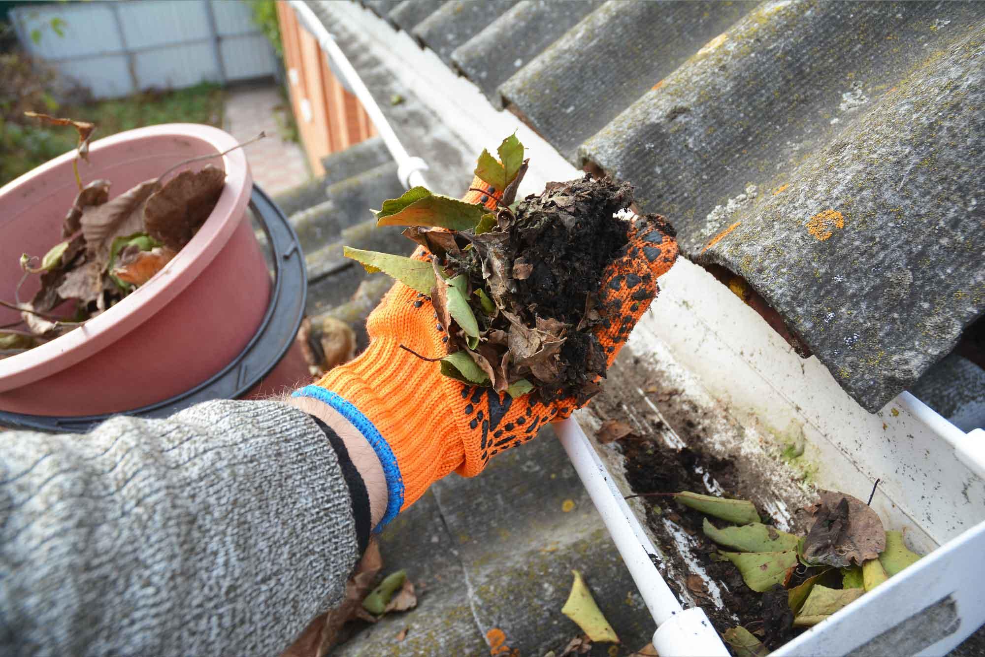 gutter-downspout-home-maintenance